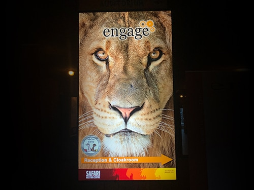 Engage 2020 highlights and announcements from among the giraffes